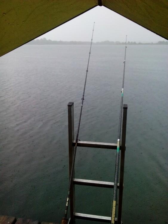 Mal wieder beim Renkenfischen Salmoniden Angelplatz.at